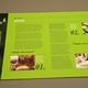 Natural Cosmetics Brochure Template