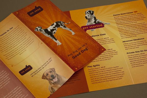 Dog Trainer Brochure Template Inkd