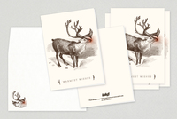 Illustrated Reindeer Holiday Greeting Card Template