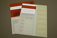 Marketing Firm Datasheet Template