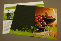 Elegant Winery Brochure Template