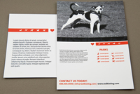 Dog-Walking Service Postcard Template