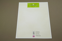 Cute Pet Adoption Letterhead Template