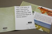 Environmental Conservation Organization Brochure Template
