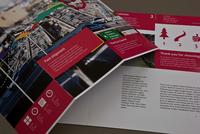 Modern Bike Messenger Brochure Template