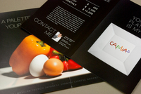Sleek Personal Chef Brochure  Template