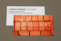 Brick Maintenance Business Card Template