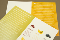 Juice Bar Brochure Template