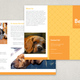 Pet Sitting Brochure Template
