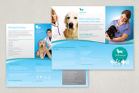 Veterinary Brochure Template