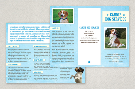 Pet Services Brochure Template  Inkd