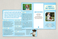 Pet Services Brochure Template