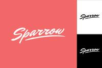Expressive Script Logo Design Template