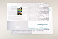 Illustrative Real Estate Newsletter Template