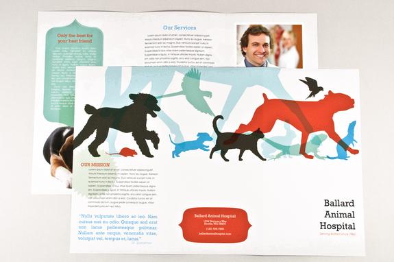 Veterinary clinic tri fold brochure template.