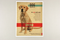 Friendly Dog Walking Flyer Template