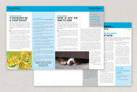 The Financial Planners Newsletter Template