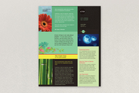Bright Environmental Non-Profit Datasheet Template