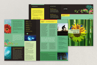 Bright Environmental Non-Profit Newsletter Template