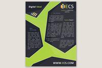 Express Computer Service Flyer Template