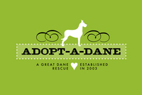 Cute Pet Adoption logo Template