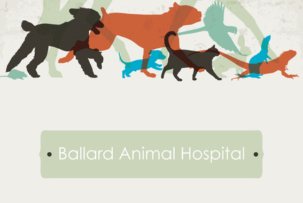 Veterinary logo template inkd veterinary logo template medium996b0a707e19012c640f0016cbab2572 toneelgroepblik Choice Image