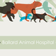 Veterinary Brochure with Silhouetted Animals Template