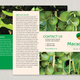 Nut Producer Brochure Template