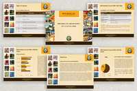 World Travel PowerPoint Presentation Template